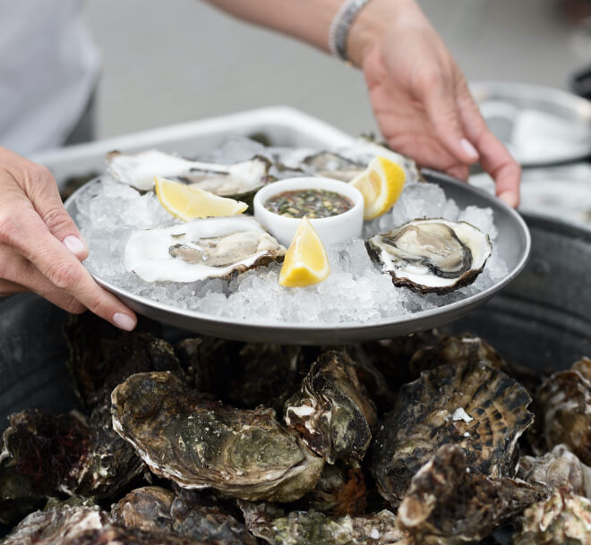 Serving a tray of oysters